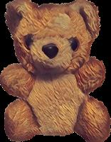 Bear Icon 2